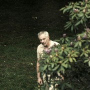 Johan van Assche - galeria zdjęć - Zdjęcie nr. 2 z filmu: Remedium