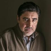 Alfred Molina - galeria zdjęć - filmweb