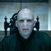 Ralph Fiennes - galeria zdjęć - Zdjęcie nr. 1 z filmu: Harry Potter i Insygnia Śmierci: Część I