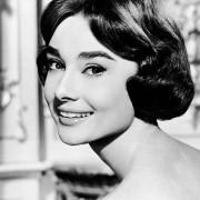 Audrey Hepburn - galeria zdjęć - Zdjęcie nr. 1 z filmu: Miłość po południu