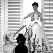 Audrey Hepburn - galeria zdjęć - Zdjęcie nr. 25 z filmu: Sabrina