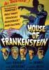 Dom Frankensteina