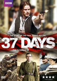37 dni (2014) plakat
