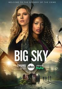 Big Sky (2020) plakat