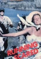 plakat - Zaciekły pościg (1980)