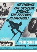 The Ski Bum (1971) plakat