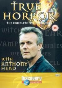 Prawdziwy horror (2004) plakat