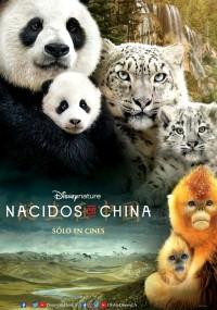 Urodzone w Chinach (2016) plakat