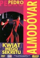 Kwiat mego sekretu(1995)
