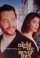 Spotkanie, którego nie było (1993) plakat