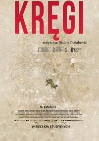 Kręgi (2013) plakat