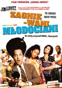 Zagniewani młodociani (1996) plakat