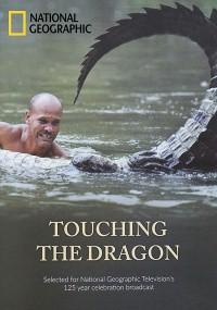Touching the Dragon (2013) plakat