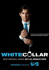 Białe kołnierzyki (2009) plakat