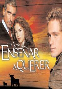 Te Voy a Enseñar a Querer (2004) plakat