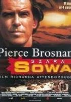 Szara Sowa (1999) plakat