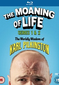 The Moaning of Life (2013) plakat