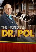 plakat - Niezwykły dr Pol (2011)