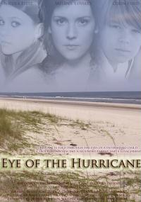 W oku huraganu (2012) plakat