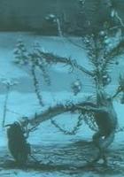 Boże Narodzenie w lesie (1913) plakat