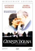 plakat - Cienista dolina (1993)