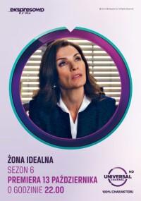 Żona idealna (2009) plakat