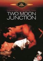 Spotkanie dwóch księżyców (1988)
