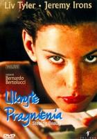 plakat - Ukryte pragnienia (1996)