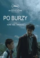 plakat - Po burzy (2016)