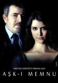 Ask-i memnu (2008) plakat
