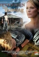 Zaginiona nastolatka (2007) plakat