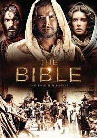 Biblia (2013) plakat
