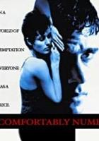 Comfortably Numb (1995) plakat