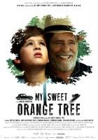 Moje drzewko pomarańczowe