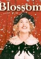 Blossom (1990) plakat
