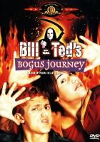 Szalona wyprawa Billa i Teda