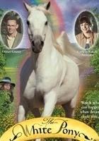 Skrzat i kucyk Pony