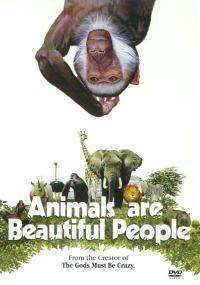 Zwierzęta są piękną społecznością