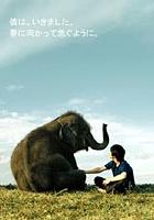 Hoshi Ni Natta Shōnen (2005) plakat