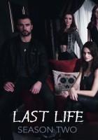 plakat - Last Life (2015)