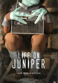 Life on Juniper