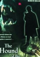 Pies Baskerville'ów (2000) plakat