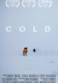 Zimno (2011) plakat