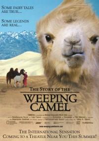 Opowieść o płaczącym wielbłądzie