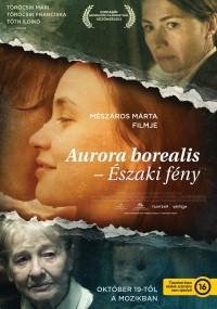 Zorza polarna (2017) plakat