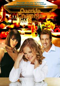 Rywalka od serca (2008) plakat