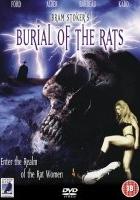 Królowa szczurów (1995) plakat