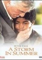 Letnia burza (2000) plakat