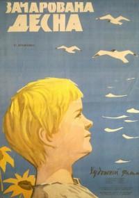 Zaczarowana Desna (1964) plakat
