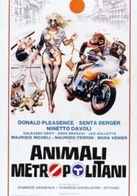Zwierzęta miejskie